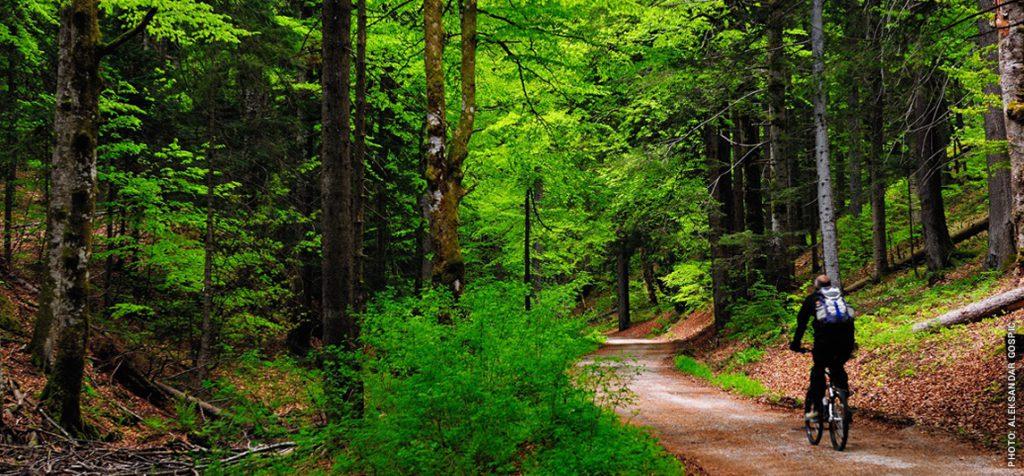 natuurpark Papuk in Kroatie